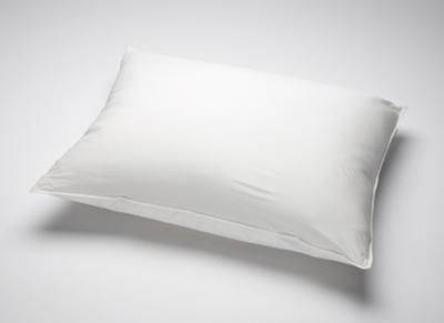 Medline Frostlite Vinyl Zippered Pillow Cover 21 X 27 Case