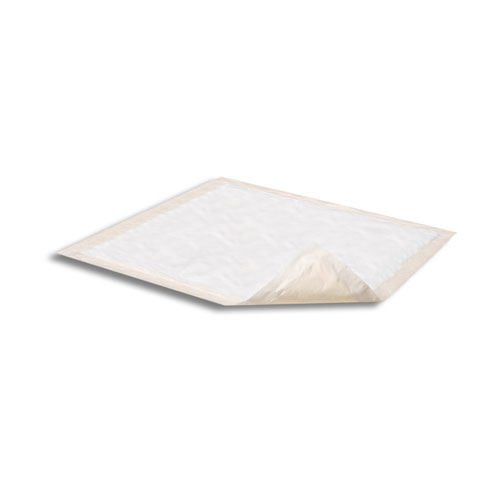 https://incontinencesupplies.healthcaresupplypros.com/buy/disposable-underpads/attends-night-preserver