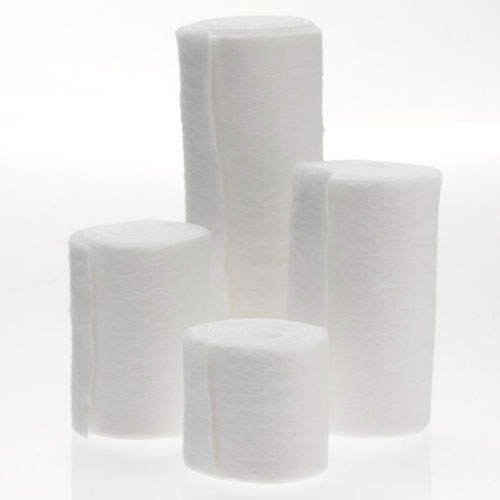 https://woundcare.healthcaresupplypros.com/buy/traditional-wound-care/under-cast-padding/wytex-undercast-padding