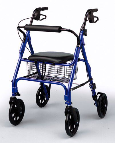 https://patienttherapy.healthcaresupplypros.com/buy/walking-aids/walkers/rolling/the-rollator